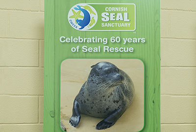 Celebrating 60 years of Seal Rescue