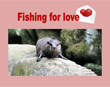 Sanctuary's Otter Finds Love While Fishing for Love