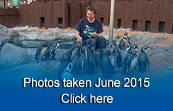 Scarborough Sea Life Sanctuary - June 2015