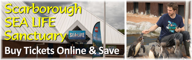 [The Scarborough SEA LIFE Sanctuary - Buy Tickets Now & Save]