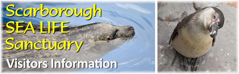 [The Scarborough SEA LIFE Sanctuary - VISITORS INFORMATION]