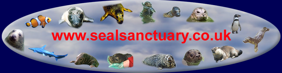Sealsanctuary Graphic